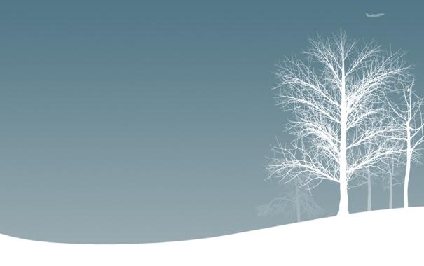 Фото обои зима, снег, деревья, авиация, настроение, самолёты, зимние обои