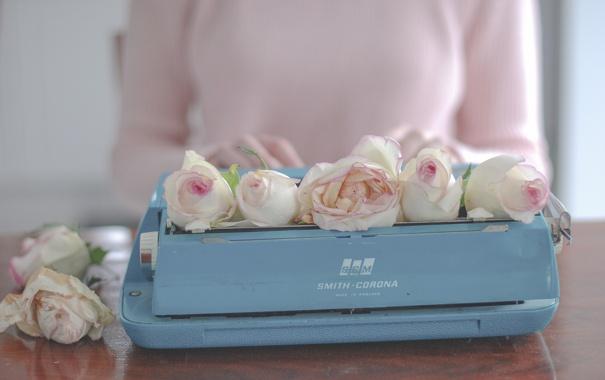 Фото обои цветы, розы, печатная машинка, бутоны