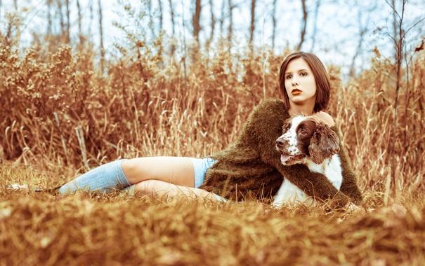 Фото обои осень, девушка, собака