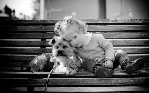 Фото обои собака, девочка, скамья