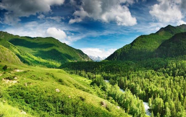 Фото обои лес, небо, облака, горы, река, голубое, Green highlands
