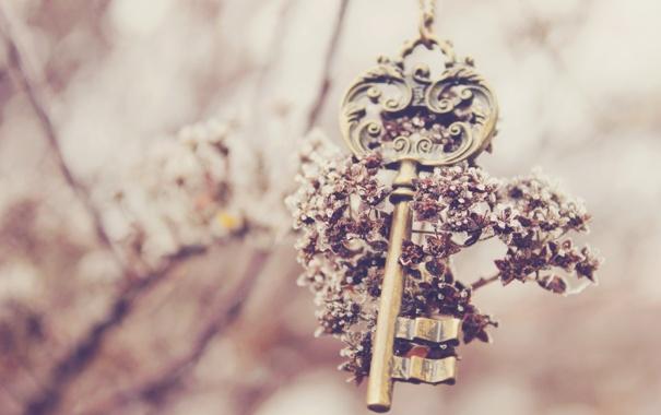 Фото обои цветок, ключ, keys
