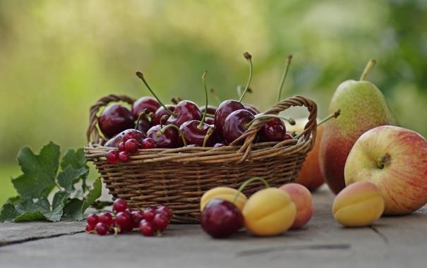 Фото обои лето, вишня, корзина, яблоко, фрукты, смородина, груша. абрикосы