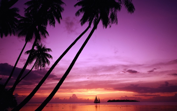 Фото обои закат, природа, отдых, остров, путешествие, Tahiti, Таити