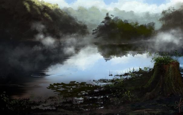 Фото обои деревья, туман, озеро, пруд, пень, растения, утро