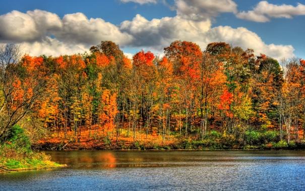 Фото обои осень, природа, река, краски, HDR