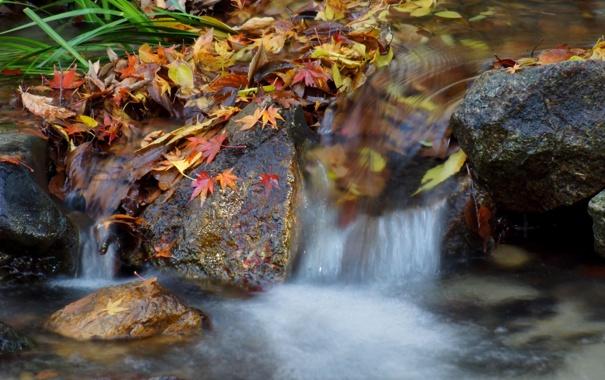 Фото обои осень, листья, река, камни, водопад