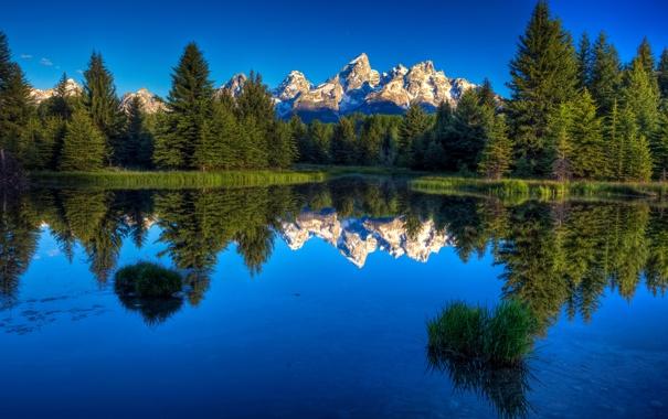 Фото обои лес, небо, отражение, гора