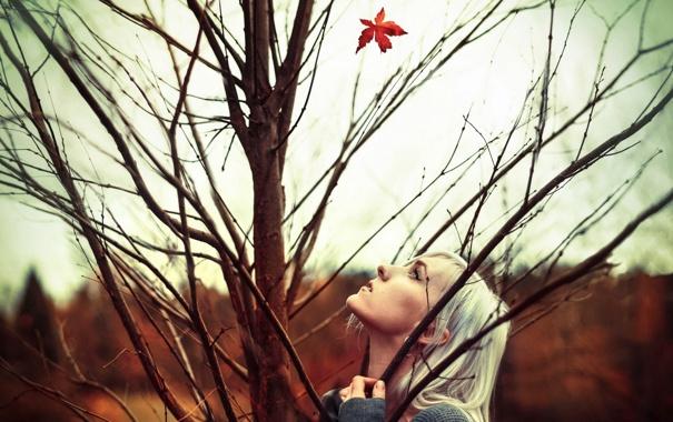 Фото обои осень, девушка, лист