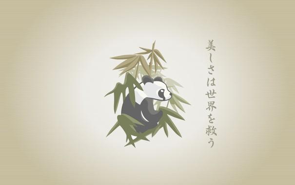 Фото обои рисованая, panda, бабук