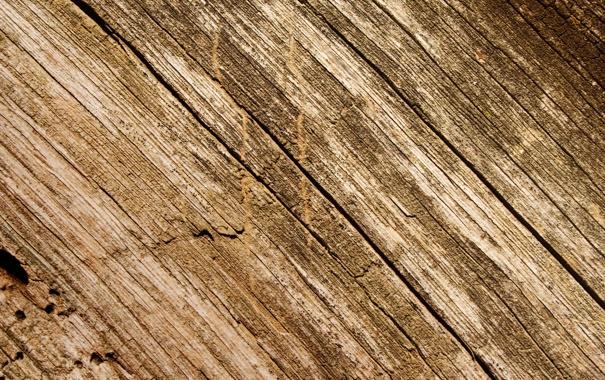 Фото обои трещины, дерево, сухое