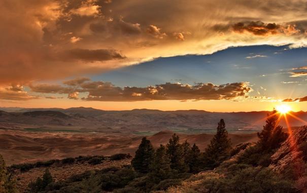 Фото обои лес, небо, солнце, облака, лучи, пейзаж, закат