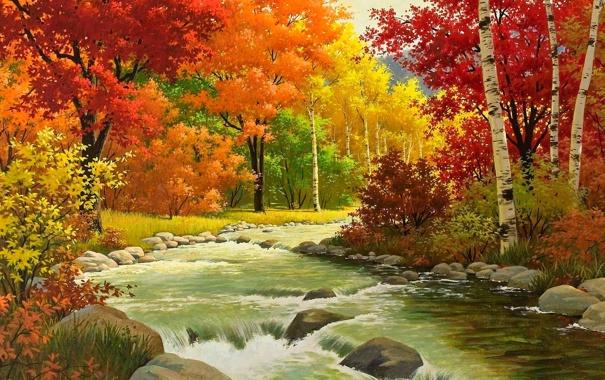 Фото обои лес, деревья, река, камни, листва, Осень