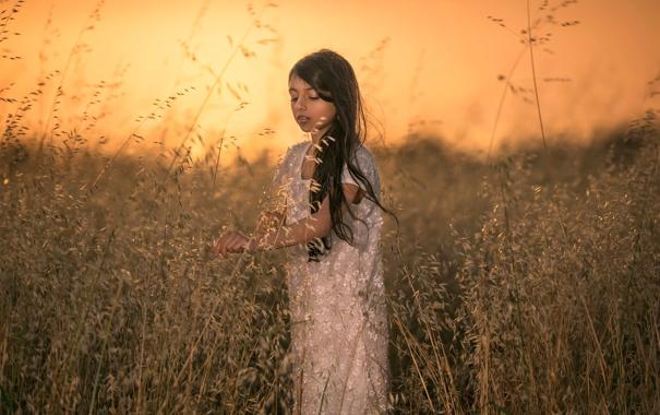 Фото обои поле, закат, девочка