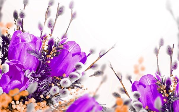 Фото обои весна, верба, willow twig, тюльпаны, tulips, spring, flowers