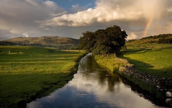 Фото обои пейзаж, трава, небо, лето, деревья, природа, растения