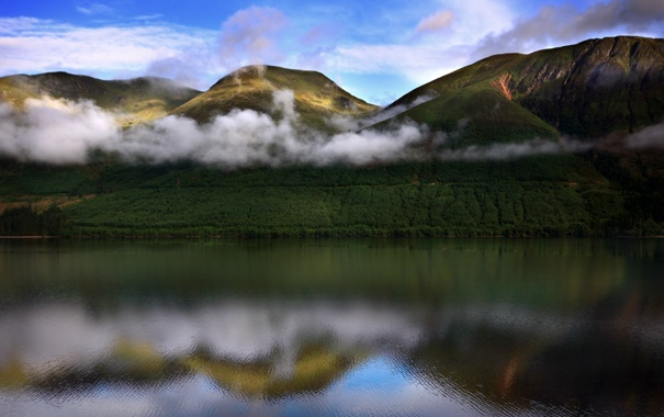 Фото обои лес, горы, река