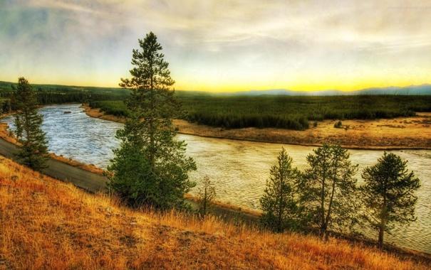 Фото обои дорога, трава, деревья, река, берег, жёлтая