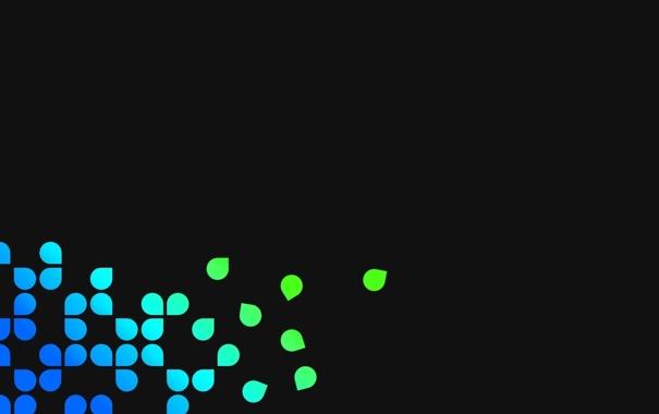 Фото обои чёрный фон, Текстуры, разноцветные лепестки