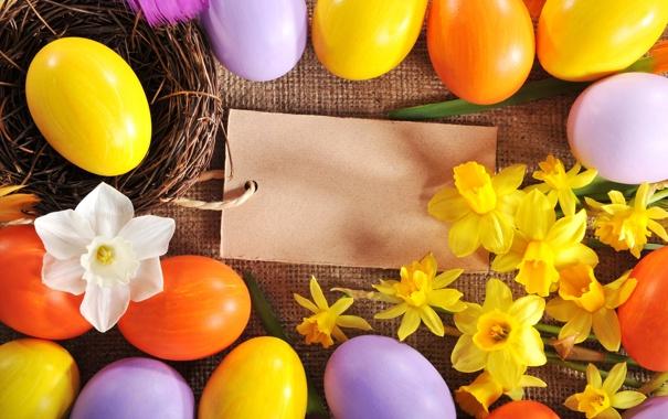 Фото обои цветы, яйца, Пасха, flowers, нарциссы, spring, Easter