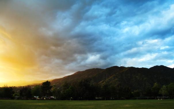 Фото обои зелень, поле, небо, трава, цвета, облака, деревья