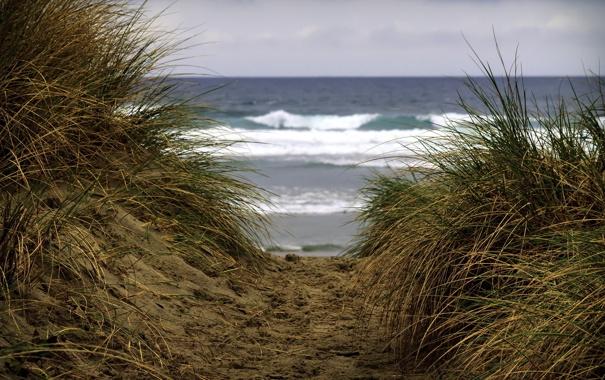 Фото обои море, природа, дюны