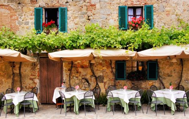 Фото обои цветы, стена, окна, кафе, плющ, столики