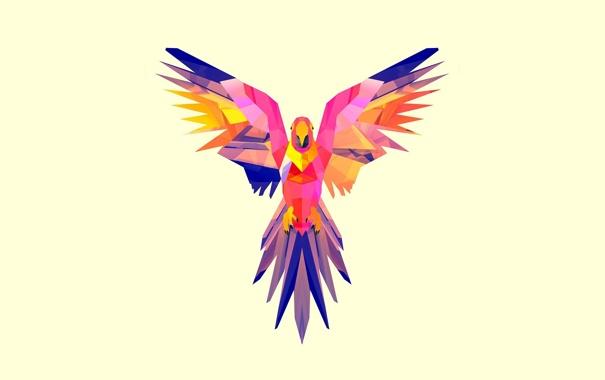 Фото обои арт, птица, крылья, минимализм