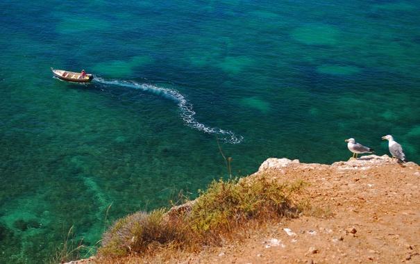 Фото обои море, скалы, берег, лодка, человек, чайки