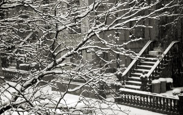 Фото обои зима, снег, ветки, забор, дома, лестница