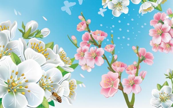 Фото обои весна, пчела, ветки, вектор, цветы