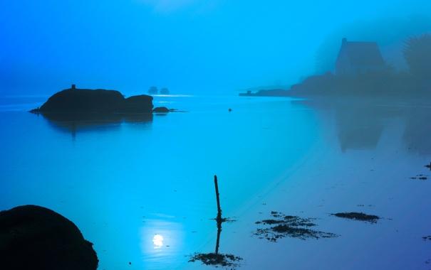 Фото обои туман, озеро, утро