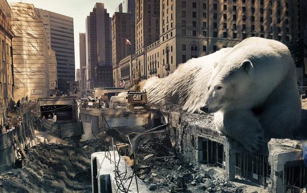 Фото обои город, люди, здания, дома, лежит, разруха, белый медведь