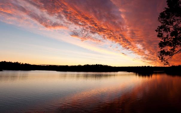 Фото обои небо, закат, река, розовый, вечер