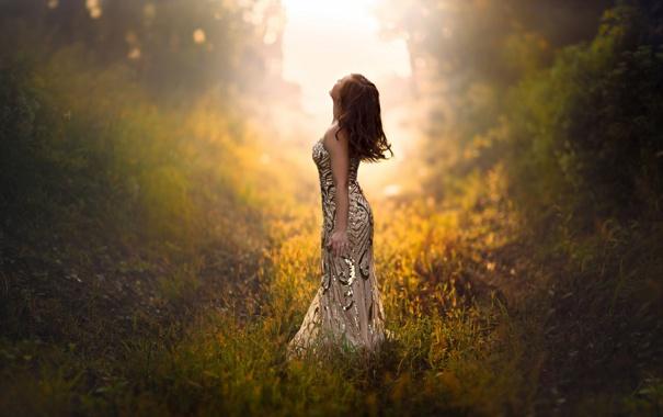 Фото обои утро, девушка, солнце, туман