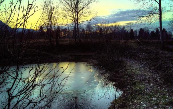 Фото обои холод, лед, зима, вода, деревья, вечер, сумерки
