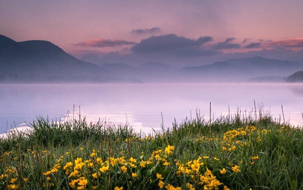 Фото обои трава, цветы, горы, озеро, дымка, England, Pooley Bridge