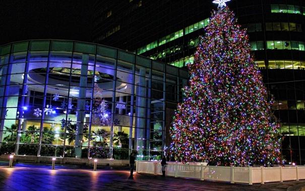 Фото обои фонари, Город, ночь, огни, окна, снежинки, ёлка