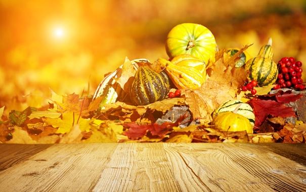 Осень обои на рабочий стол рябина