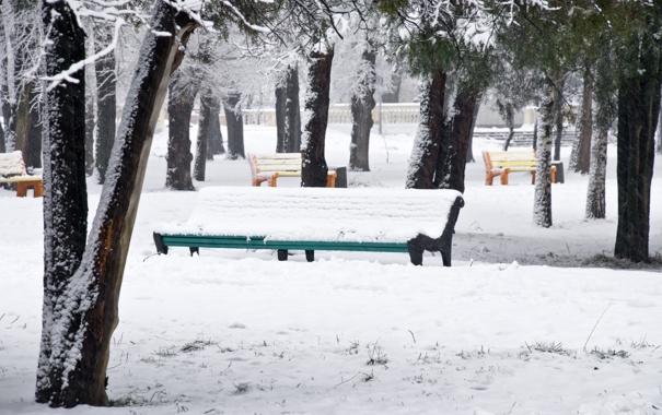 Фото обои зима, снег, деревья, парк, разноцветные, скамейки, Snow park