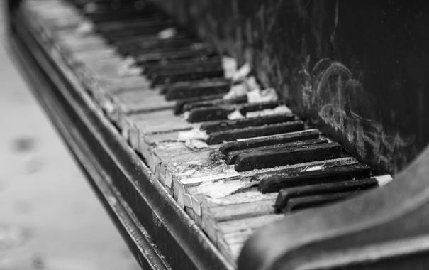 Фото обои макро, музыка, пианино