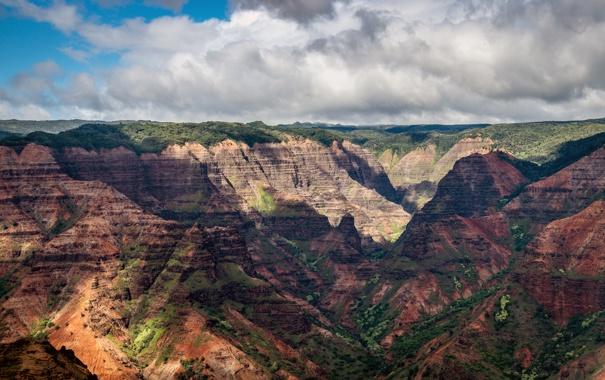 Фото обои природа, каньон, Waimea canyon
