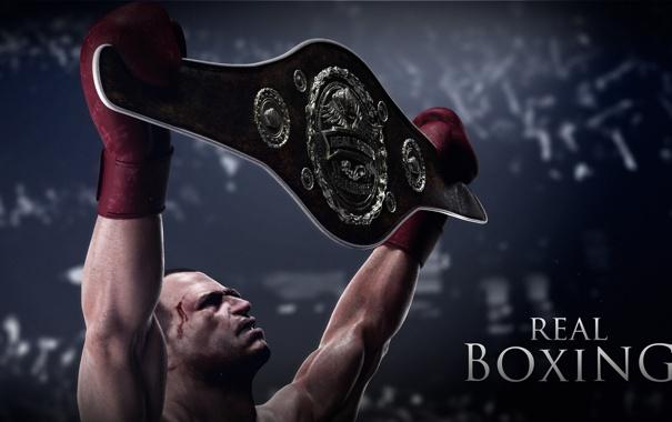 Фото обои победа, кровь, iPhone, бокс, пояс, Android, iPad