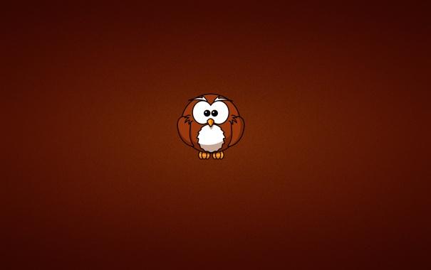 Фото обои сова, минимализм, owl