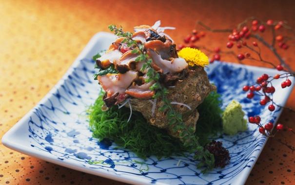 Фото обои зелень, ягоды, Япония, раковина, осьминог, Japan, морепродукты