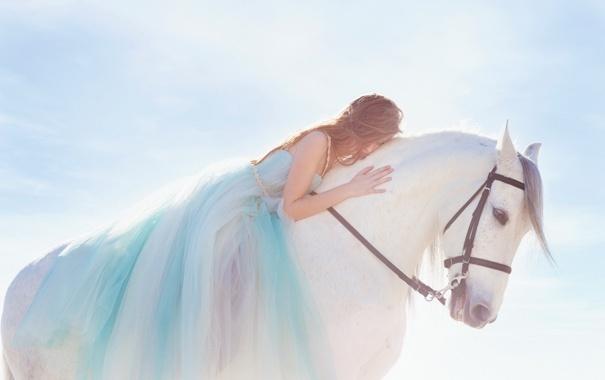 Фото обои девушка, поза, конь