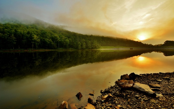 Фото обои деревья, туман, озеро, Закат