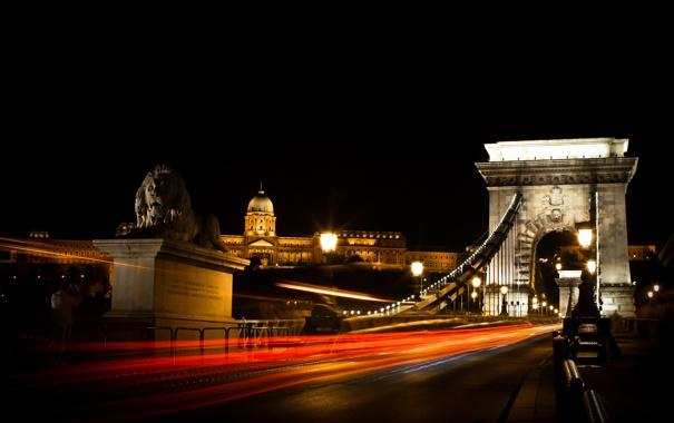 Фото обои Budapest, лев, ночь, венгрия, огни, опора, мост