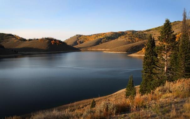 Фото обои трава, вода, деревья, природа, озеро, фото, холмы