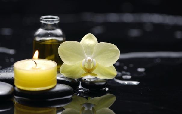 Фото обои вода, масло, свеча, орхидея, water, Spa, спа